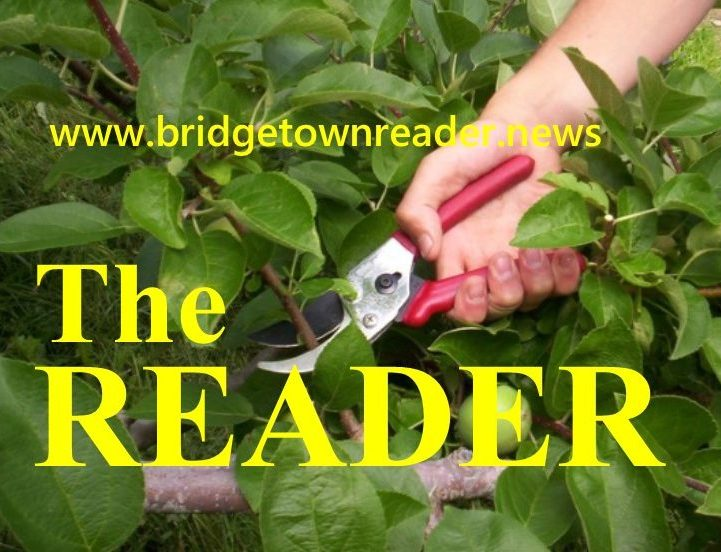 The Bridgetown Reader